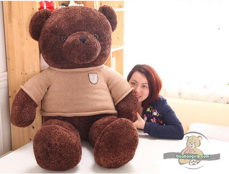 Gấu Teddy Head